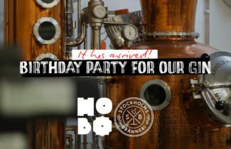 Gin Birthday Party